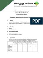 PRÁCTICA DE LABORATORIO.5.FYTPC.doc