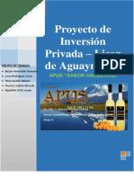 PROYECTO DE INVERSION PRIVADA - LICOR DE AGUAYMANTO.pdf