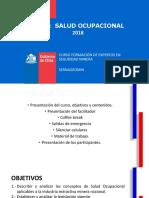 Salud Ocupacional v1