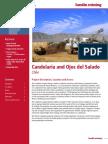 Summary Report Candelaria