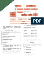 resumo de hp4 - geriatria.docx