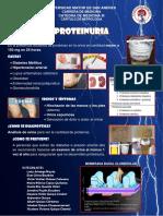Banner Proteinuria