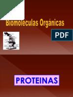 4 PROTEINAS Y ACIDOS NUCLEICOS.ppt