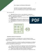 APA Amenazas y Ataques a los Sistemas de Información-3