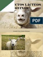 Armando Nerio Guedez Rodríguez - Productos Lácteos Ovinos
