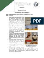 Protocolo_Acetolise