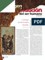 origen-y-evolucion-del-ser-humano-1.pdf