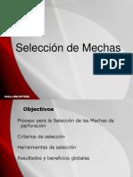 Seleccion de Mechas Martin Palacios