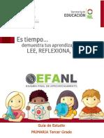 efanl_guiaprimaria3.pdf