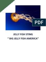 Jelly Fish Sting