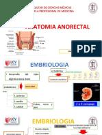 anatomiaanorrectalveroshka-161214015900