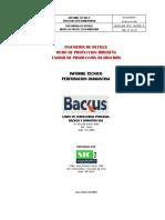 156451832-Informe-Tecnico-Perforacion-Diamantina.pdf