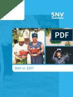 SNV in 2017