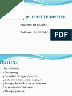 1st Trimester Imaging
