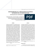 Udder Morphobiometric in Milk Buffaloes From West Herds of Cuba