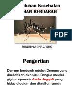 Penyuluhan Dbd Fix Ppt