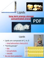 1.5.Lipids