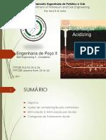 Engenharia de poço I I -Intervenção~Estimulação  - Danos e Acidificação.pdf