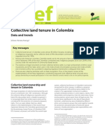 Collective Land Tenure in Colombia Data and Trends