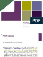 Agnosias.pdf