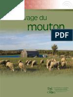 l Elevage Du Mouton