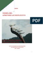 02 Daros,  Teoria Del Aprendizaje Reflexivo