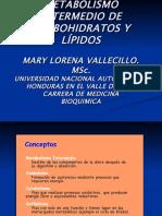 Metabolismo Intermedio de Carbohidratos y Lipidos