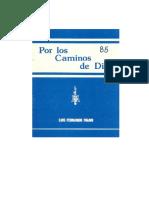 Por Los Caminos de Dios (Luis Fernando Figari, 1985)