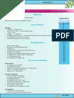 Redemittel.pdf