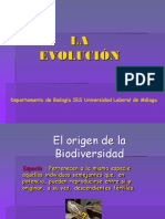 Evolucion.ppt