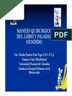 Pacientes Con Labio y Paladar Hendido. Manejo Ortopédico-Quirurgico (3)