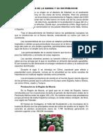 Historia de La Sandia y Su Distribucion