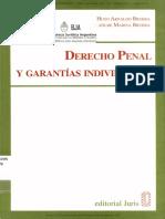DERECHO PENAL Y GARANTÍAS INDIVIDUALES-Hugo A. Bruera.pdf