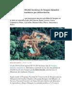 Deforestacion en El Peru