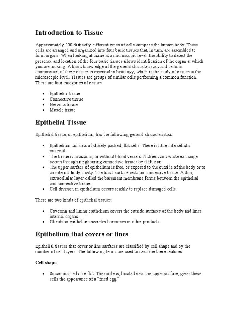 3. Tissues Cliff Notes a&P | Epithelium | Tissue (Biology)