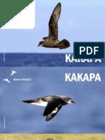 Manu Project - Rapa Nui