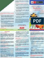 FORMAR SINDICATO ... MTPE.pdf