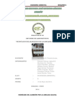 2informelab2hidrlisisdelalmidnporlaamilasasalival13-05-14-copia-140525004242-phpapp02.pdf