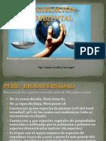 Expolegislacinambiental 120720103626 Phpapp01 (1)