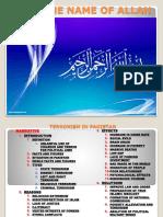 Terrorism in Pakistan Outlines