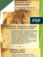 biodiversaidad
