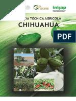 Agenda Técnica Chihuahua OK.pdf
