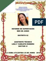 Supervision Junio 2018