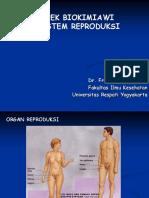 Biokimia Reproduksi Kep 12