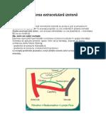 Fiziopatologia-echilibrului-hidro-electrolitic.docx