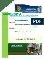 Cultivo de Tomate en Fundo La Peña Informe Oleri