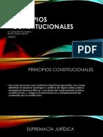 1533832989589_PRINCIPIOS CONSTITUCIONALES.pptx
