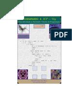 programando-hp.pdf