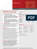 38165065-2010-09-09-DBS:STRATEGY-MULTI-BAGGERS-RIDING-ON-CHINA