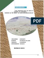 INFORME-AGROLÓGICO-Antacolpa.docx